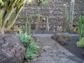 Jard°n de Cactus